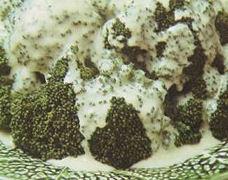 Broccolotti alla panna